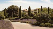 garden-cypress-provence-hotel-design-luberon-capelongue-beaumier-bonnieux