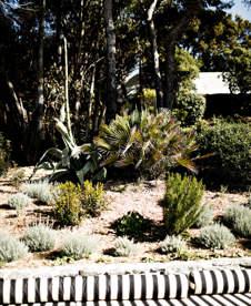 hotel-design-jardin-riviera-cote-dazur-roches-rouges-beaumier-saint-raphael
