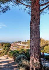 garden-terrace-bastide-hotel-design-capelongue-beaumier-bonnieux