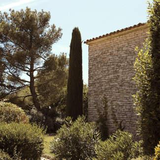 welcome-hotel-terrace-cypress-provence-luberon-capelongue-beaumier-bonnieux