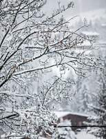 mountain-snow-hotel-alpaga-beaumier-megeve
