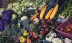 legumes-fruits-potager-produits-hotel-les-roches-rouges-beaumier-saint-raphael